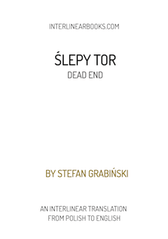 Polish book: Ślepy tor / Dead End